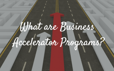 What are Business Accelerator Programs?